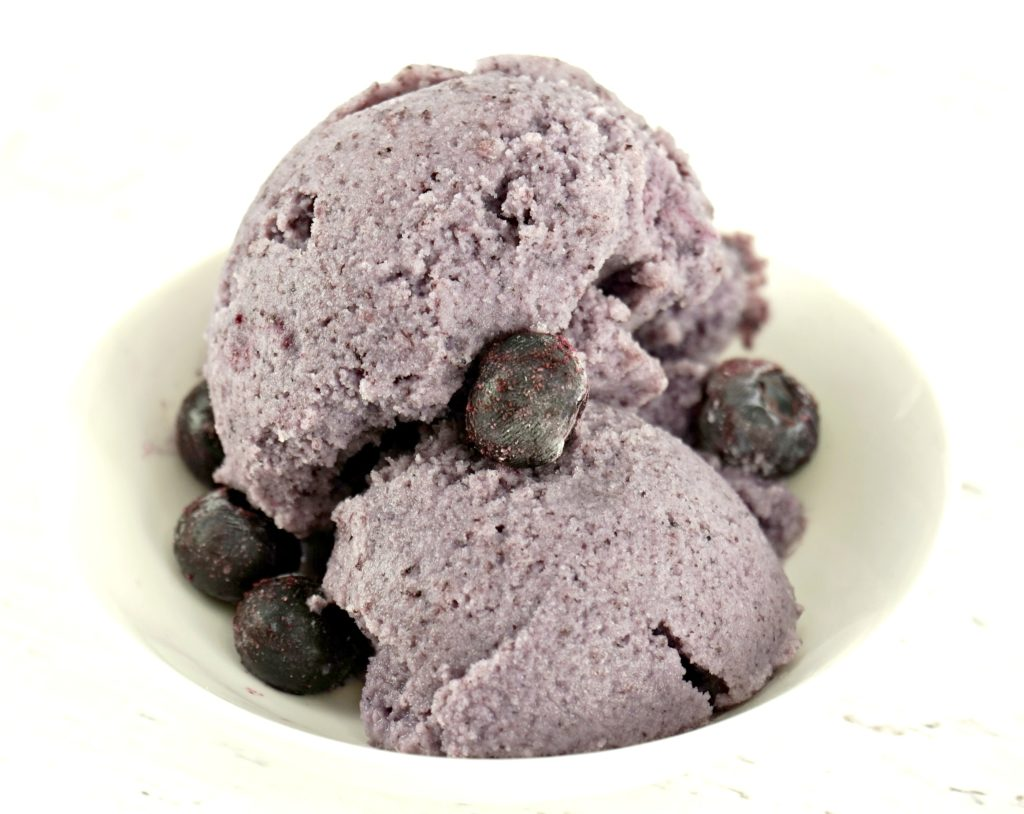 Dish of blueberry ice cream